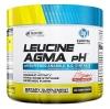 """Анаболические комплексы """"BPI Leucine Agma pH"""" (Производитель BPI Sports)"""
